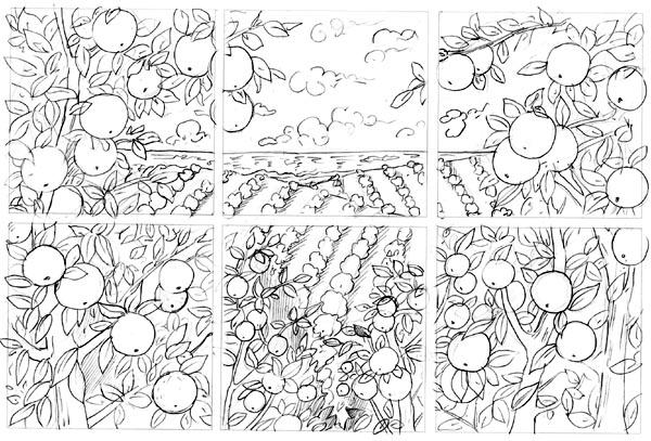 Orange Groves sketch