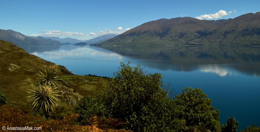 New Zealand landscape