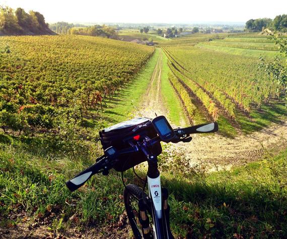 Bordeaux biking